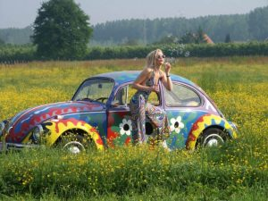 flower-power-beatle_094657-701x526