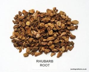 Rhubarb roots